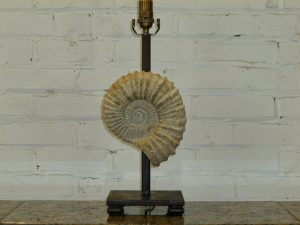 Ferro Designs LLC custom iron fossil table lamp with a dark iron base.