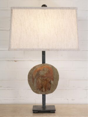Trilobite fossil custom iron table lamp with a pewter base and a 15 inch rectangle linen lamp shade.